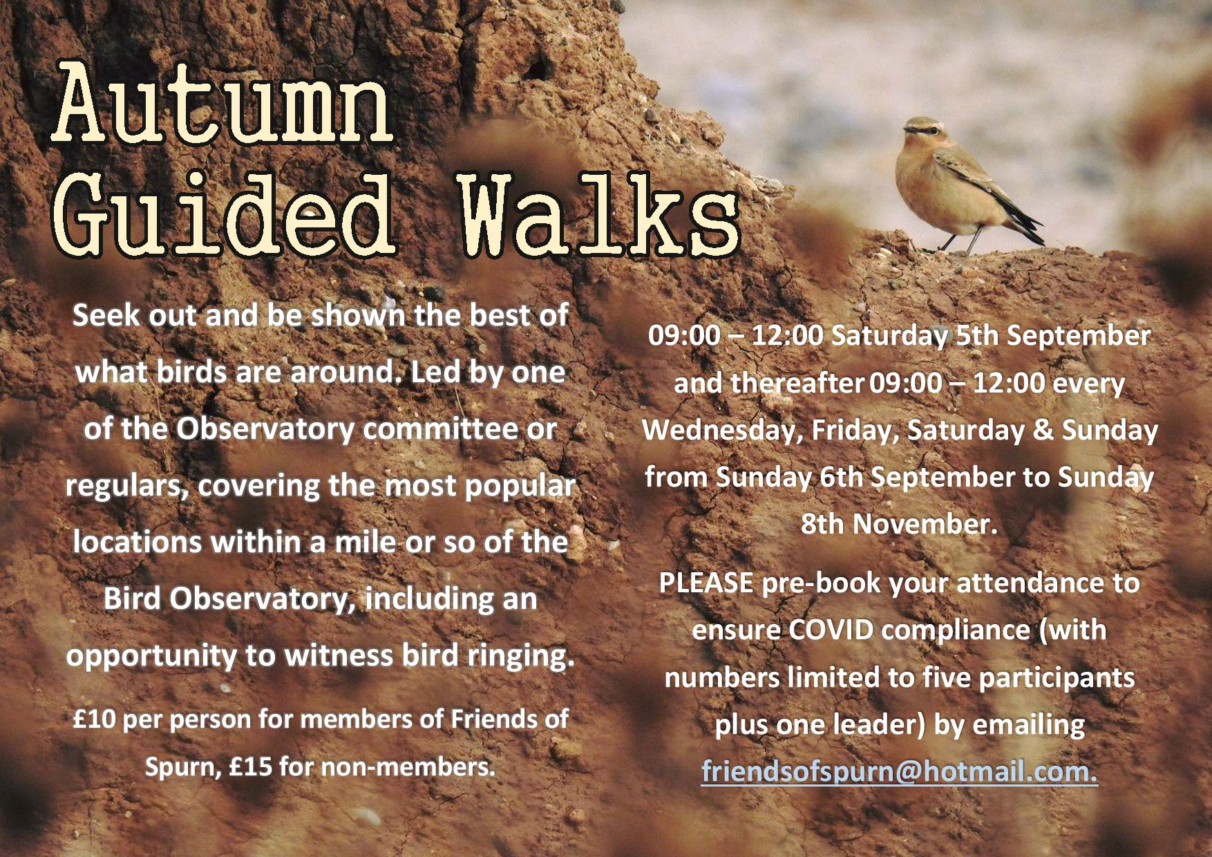 Spurn Bird Observatory Events 2020