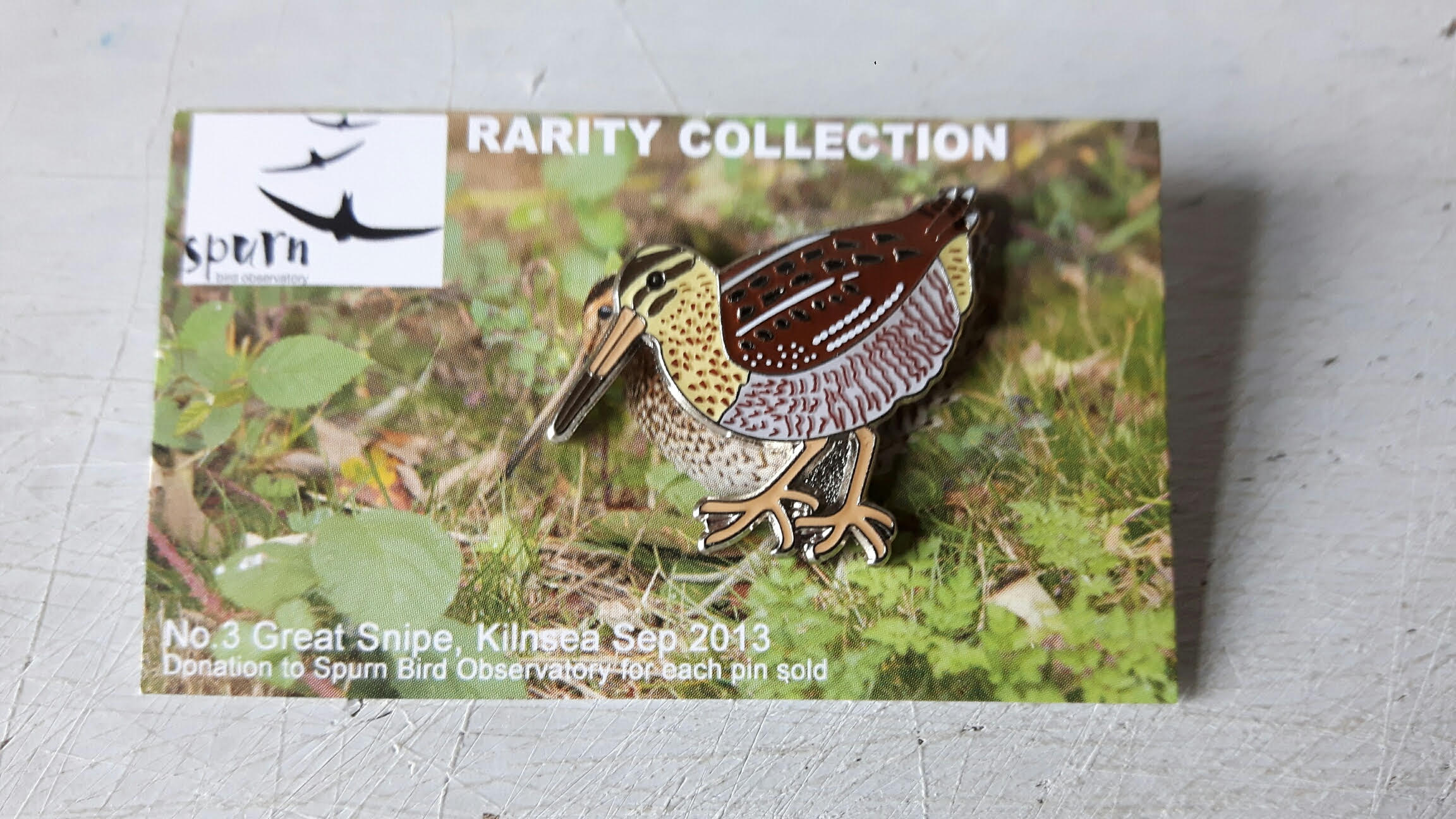 Spurn Rarities pin badges: Great Snipe
