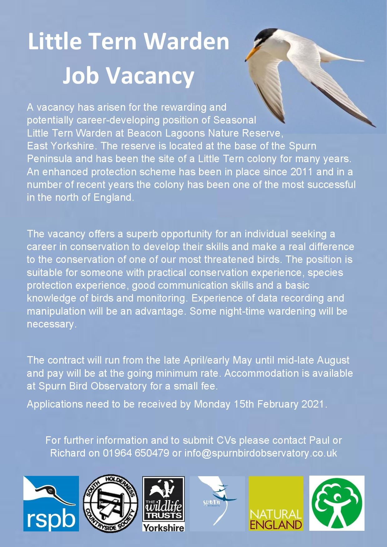 Little Tern Warden Job Vacancy